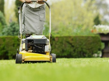 Gas-powered lawn mowers are responsible for five percent of urban smog.