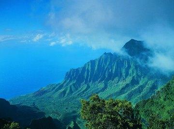The rugged terrain of the Hawaiian islands wrings voluminous rain from the trades.