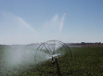 Sprinkler wheels are common in hay fields.