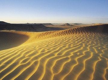 Sand is just one type of desert soil.