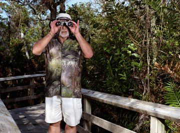 Human activities, such as increased tourism, impact the Florida Keys ecosystem.