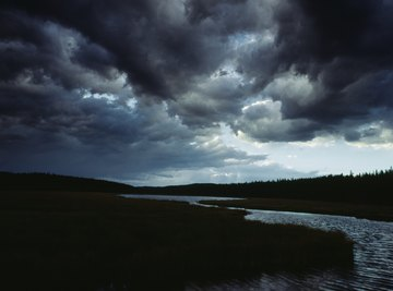 Thunderstorms bring precipitation, helping to revitalize an ecosystem.