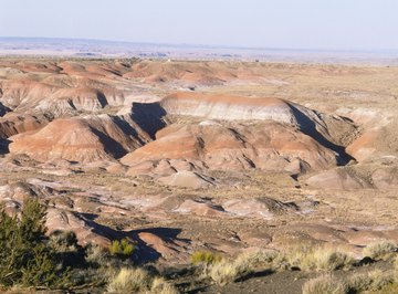The Painted Desert stretches over 93,000 acres in northeast Arizona.