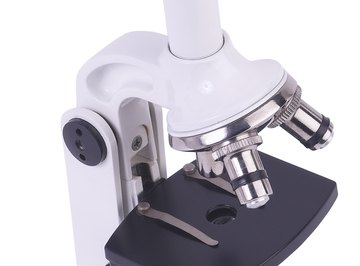 The compound microscope is the most cost-effective type of microscope.