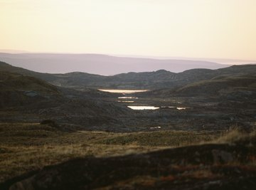 The Arctic tundra, the most common tundra on earth, during the brief growing season
