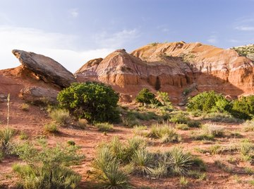 Sandstone formations in Palo Duro Canyon state park in Texas