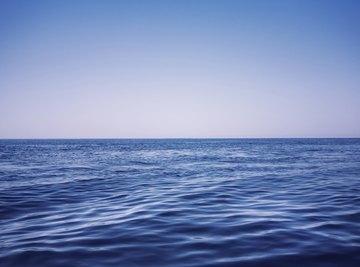 The pelagic zone defines the enormous, open-ocean wilderness.