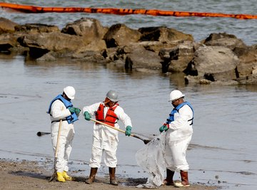 Workers cleaning up oil on the shoreline.