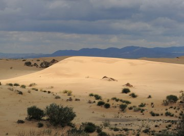 Some parts of the Sahara receive no rainfall for decades.