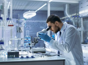 The Role of GTE in DNA Extraction