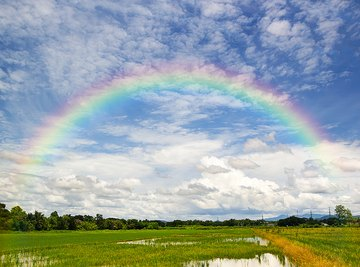 What are the colors in the rainbow?