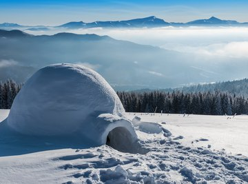 How Can I Build an Igloo for a School Project