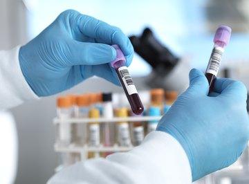 How Do Bones Produce Blood Cells?