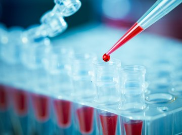 What Is the Function of a Tris Buffer in DNA Extraction