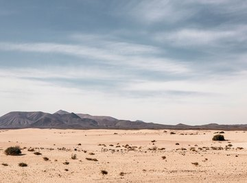The Topography of Deserts