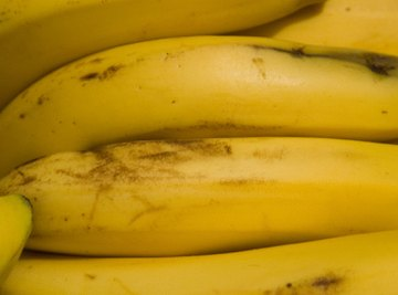 Bananas are an excellent source for inexpensive and fun science fair projects.