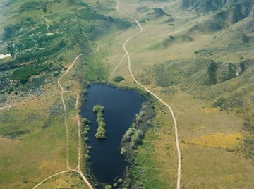 The San Andreas Fault in California lies on a plate.