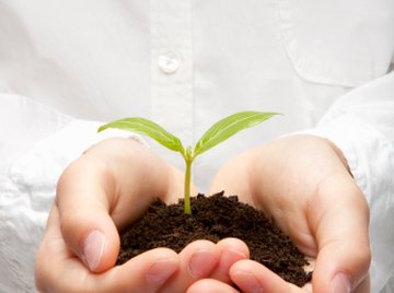 Soil structure is based on chemical and physical properties.