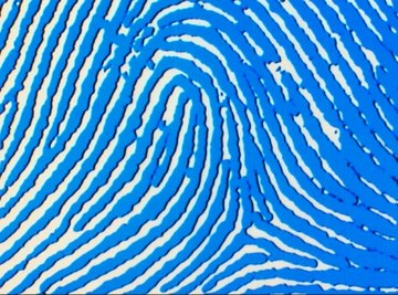 Kids enjoy learning about fingerprints and how to collect and compare them.