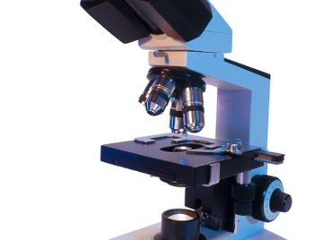 A typical microscope