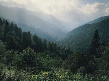 The Appalachians are a vast system of scenic mountains and ridges.