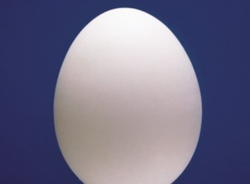 How to Do an Egg Projectile Project