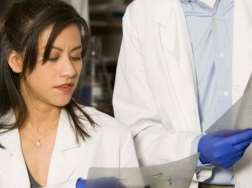 Once you've run your gel, it's time to analyze.