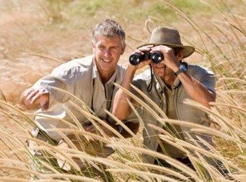 How to Describe the Grassland Biome