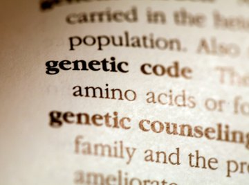 Different variants of genes are called alleles.