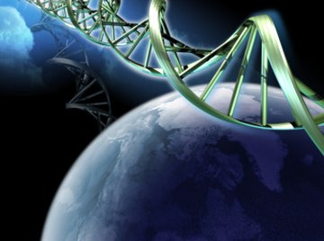 DNA codes genetic information--the blueprint of life.