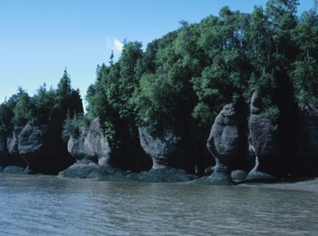 The Bay of Fundy experiences the greatest difference in water level between high and low tides.