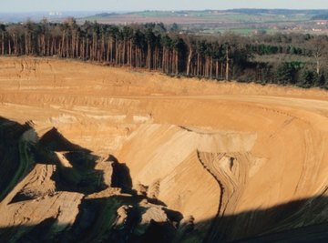Phytomining could be a green alternative to destructive mining practices.