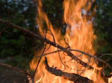 Bush burning has a negative effect on soil conditions.