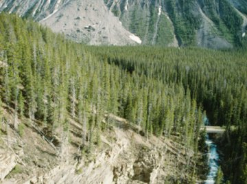 Landslides are a natural result of weathering and erosion.