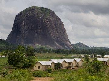 Native Plants & Animals in Nigeria