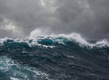 Facts About the Oceanic Zone