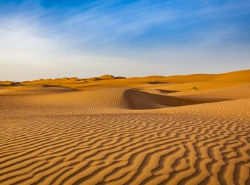 The Effects of Drought on Deserts