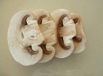 How Do Mushrooms Reproduce?