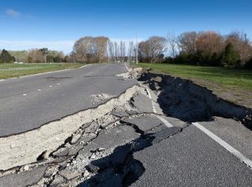 Earthquakes effect not only man made structures,  but also the delicate balance of the ecosystems.