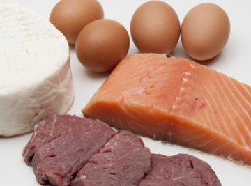 Close up of protein filled foods.