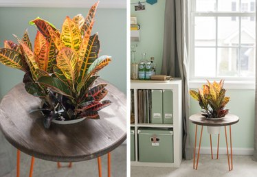 Make Your Own Planter Side Table Using Hairpin Legs and Wood