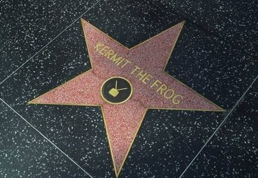 How to Create Your Own Hollywood Star
