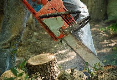 Can You Replace a Chainsaw Bar With a Smaller One?
