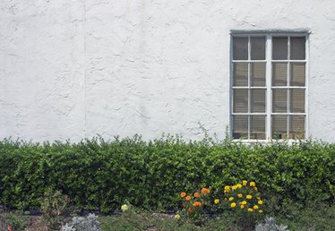 How to Install & Apply Stucco to a Backer Board