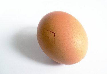 How to Make a Dinosaur Egg Without Paper Mache
