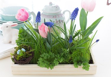 Create a Lovely Living Grass Centerpiece for Easter