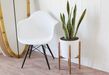 How to Build a Mid-Century Inspired Plant Stand (That Looks Like it Belongs in a Dwell Magazine)