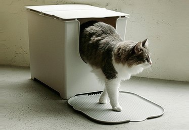 5 Genius Tricks for Hiding Your Cat's Litter Box