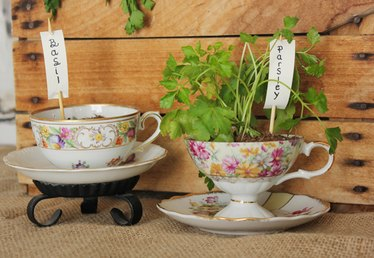 How to Make a Flower Pot From a Tea Cup