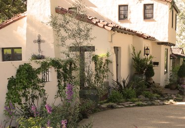 How to Create a Xeriscape in Your Yard